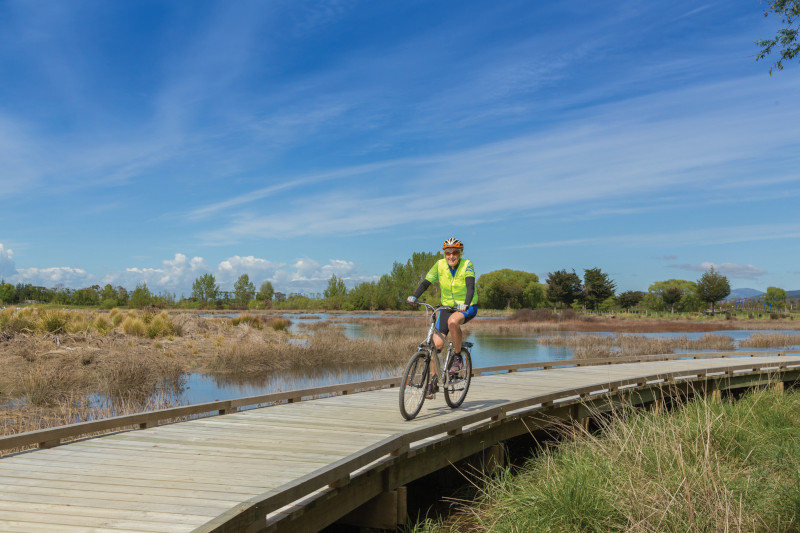 cyclist on boardwalk in Motueka