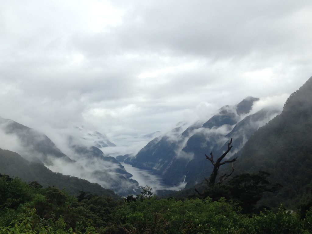 cloudy view of Doubtful Sound