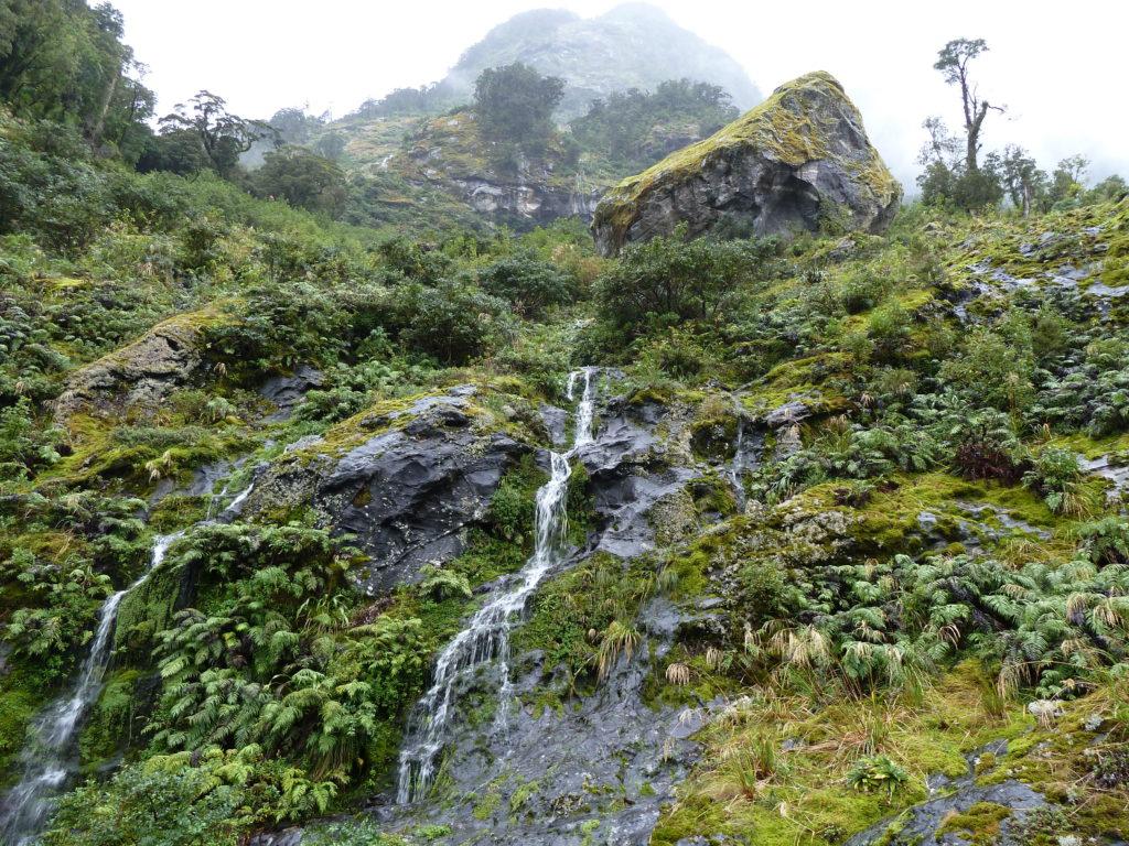 Doubtful sound waterfall